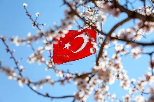 Turkish, Flag, Turkey, Red, White, Month, Stars