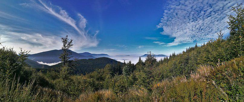 Mountains, Sky, Clouds, Forest, Meadow, Scenic