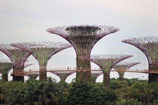 Garden, Singapore, Garden By The Bay, Futuristic, Park