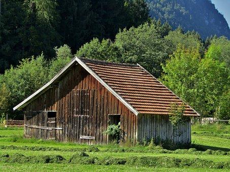 Hut, Hay, Trees, Meadow, Grass, Green, Hay Barn, Nature
