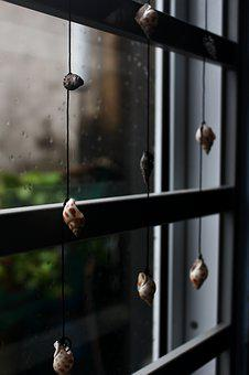 Window, Season, Snail, Blinds Snail, Dear, Glass Door