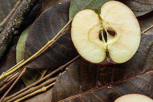 Walnut Leaves, Apple, Sliced Apple, Seeds Apple, Fruit
