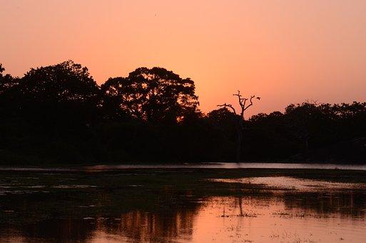 Sunset, Water, Ocean, Sea, Sky, Sunrise, Nature, Red