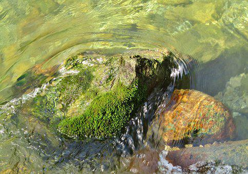 Vils, Pfronten, Bach, Water, Wave, River, Rock, Creek