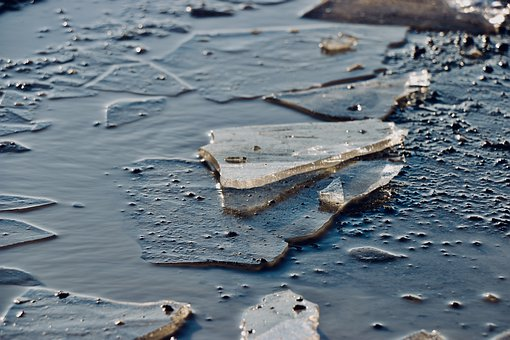 Ice Floe, Winter, Frost, Water, Cold, Brine, Ice Floes