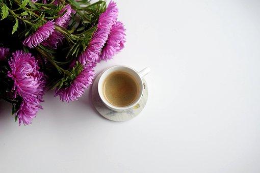 Coffee, Flower, White, Background