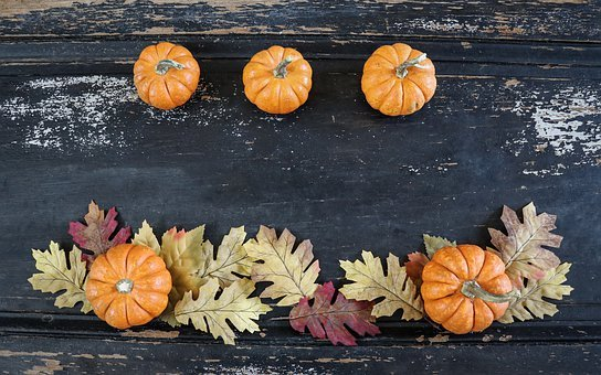 Fall Background, Fall, Background, Pumpkins, Leaves