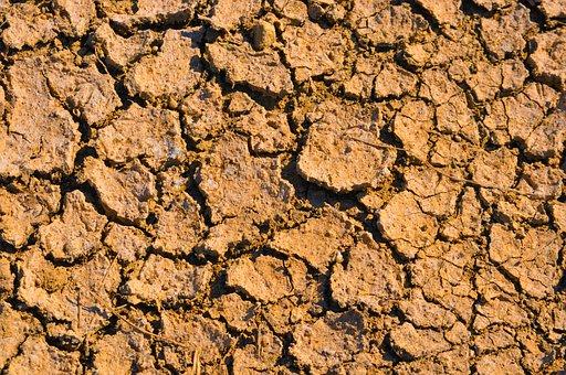 Dry, Dirt, Earth, Soil, Drought, Ground, Nature, Desert