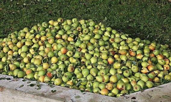 Apple, Pears, Fruit, Healthy, Vitamins, Health, Fresh
