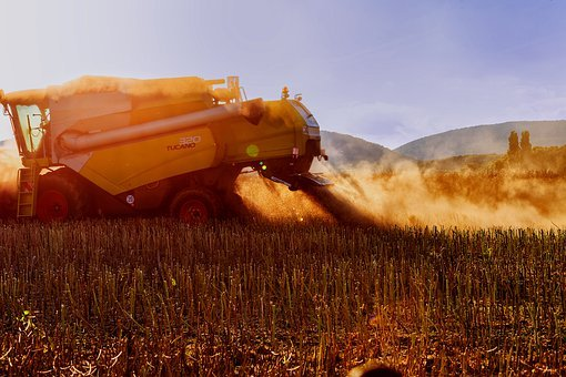 Combine Harvester, Wheat, Rye, Dry, Summer, Summer Heat