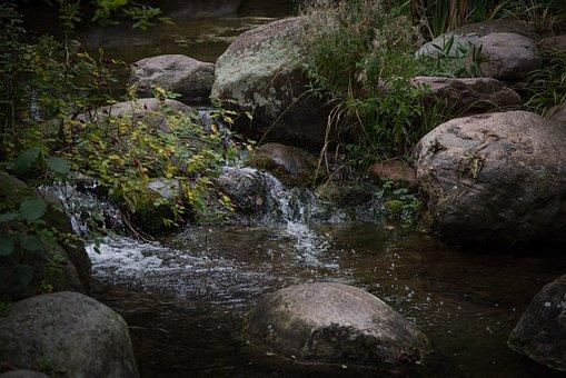 Stone, Bach, Creek, Landscape, Water, Nature, Scenic