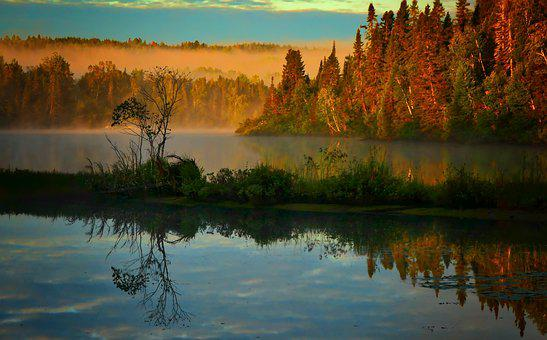 Landscape, Nature, Trees, Water, Reflections, Fog