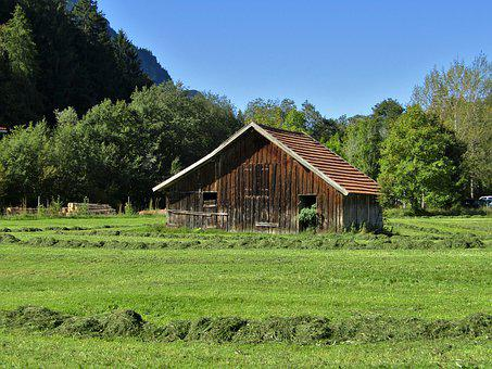 Hut, Hay, Trees, Meadow, Grass, Green, Hay Barn, Nature