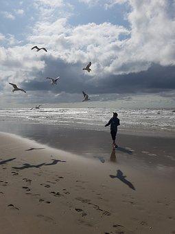 Beach, Gulls, Sea, Man, Sand, Water, Footprints, Sky