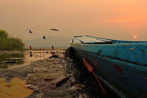 Sunset, Lagoon, Nature, Boat, Flying Bird, Water, Sky