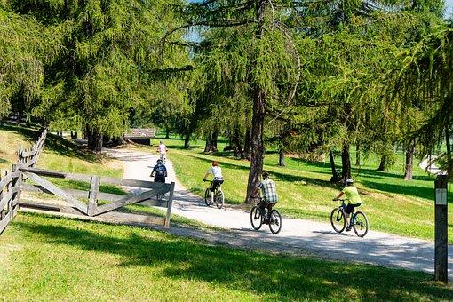 Cycling, Wheel, Bike, Cyclists, Fitness, Leisure