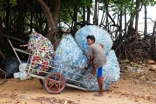 Garbage, Collect, Plastic, Bottles, Disposal