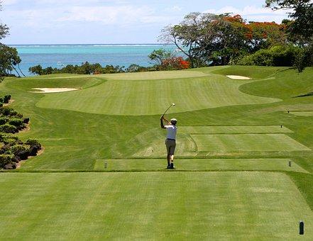 Golf, Man, Tee, Golfers, Golf Clubs, Sport, Ball Sports