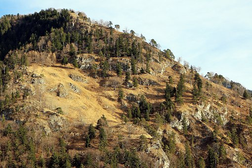 Mountain, Hill, Karg, Summit, Increase In, Firs, Spruce