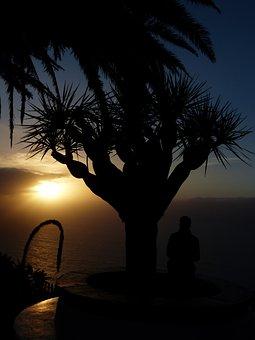 Samoga, Viewpoint, El Sauzal, Coast, Tenerife