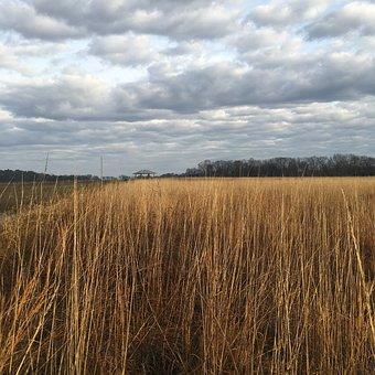 National Wildlife Refuge, Bird Sanctuary, Alabama