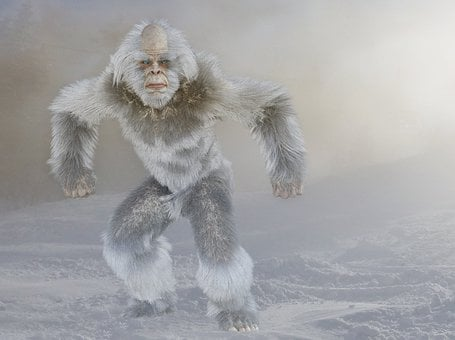 Yeti, Bigfoot, Snow Man, Almas, Sasquatch, Yowie