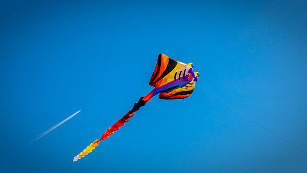 Dragons, Kite Flying, Sky, Blue, Flying, Colorful, Wind