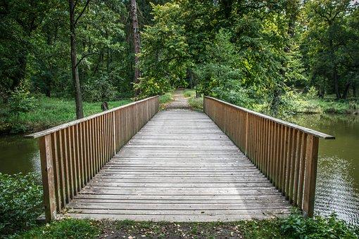 Footbridge, Path, Nature, Bridge, Landscape, Wood