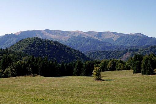 Mountains, Greater Fatra, Slovakia, Nature, Trees