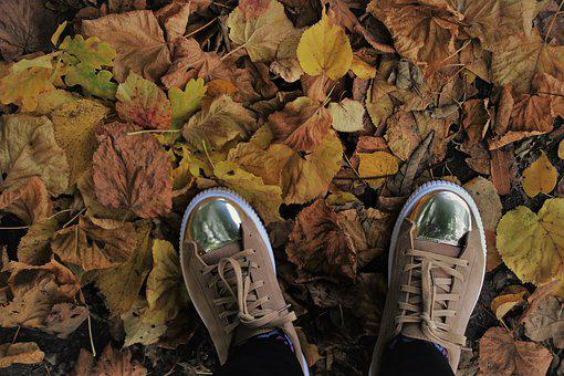 Foliage, Shoes, October, Autumn, Stand, Hdr, Dry, Oct