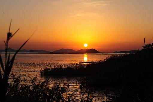 Sunrise, Sea, Beach, Reed, Sunset, Water, Sky