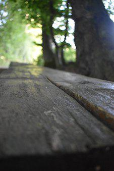 Bank, Wood, Bench, Forest, Nature, Out, Park