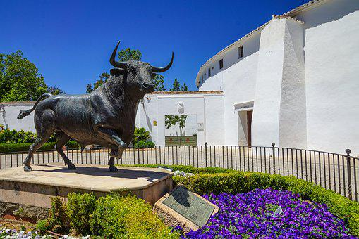 Spain, Ronda, Andalusia, Gorge, Sunshine, Flowers
