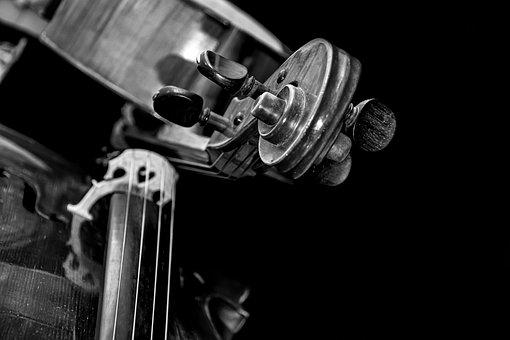 Strings, Curl, Music, Sound, Symphony, Orchestra