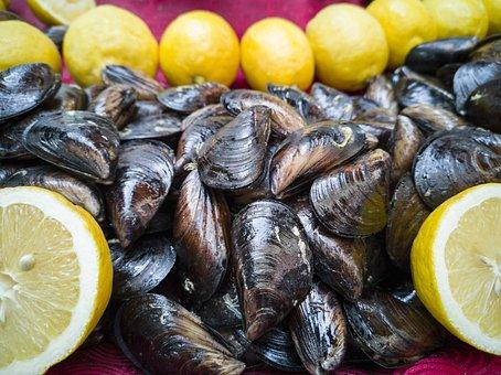 Mussels, Stuffed, Lemon, Mediterranean, Kitchen