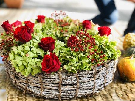 Rose, Flower, Rose Bloom, Nature, Blossom, Bloom