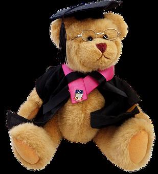 Teddy, Bear, Cute, Toy, Professor, Education, Teaching