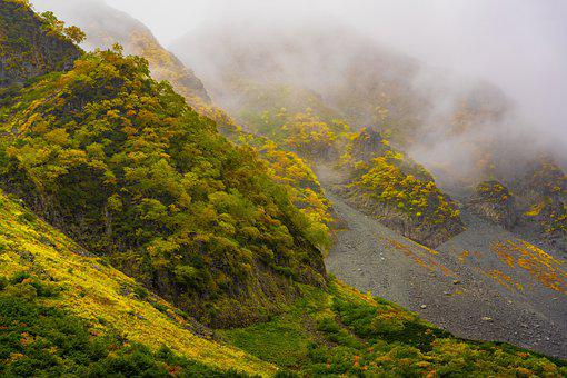 Landscape, Mountain, Autumn, Yellow Leaves, Drizzle