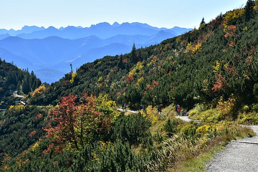 Alpine, Herzogstand, Mountain, Bavaria, Nature