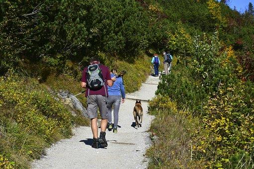 Hiking, Mountains, Alpine, Vacations, Sun, Mountain