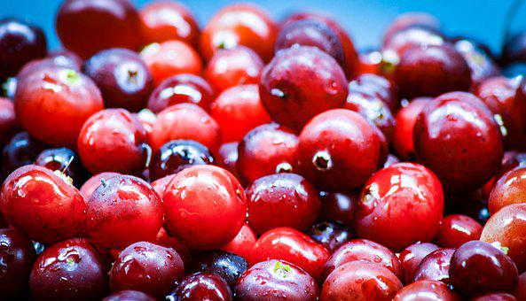 Food, Berry, Cranberry, Ripe, Red, Round, Juicy, Fresh