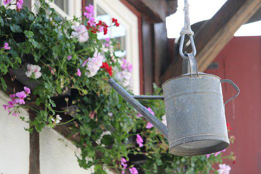 Watering Can, Decoration, House, Flowers, Deco