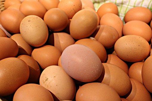 Egg, Easter, Food, Eat, Easter Eggs, Breakfast, Protein