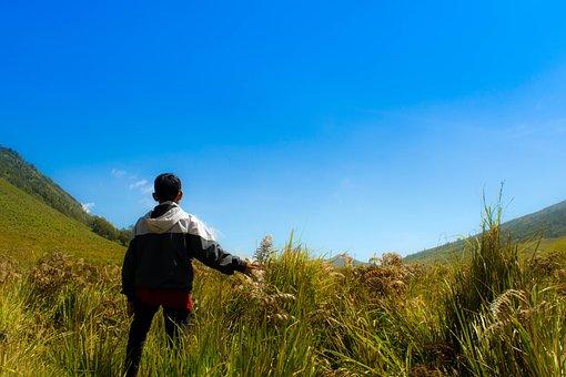 Savana, Hill, Mountains, Java, Nature, Indonesia, Bromo
