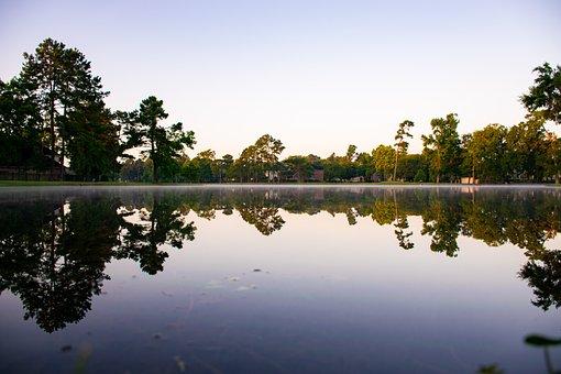Water, Park, Nature, Landscape, Lake, Scenic, Garden