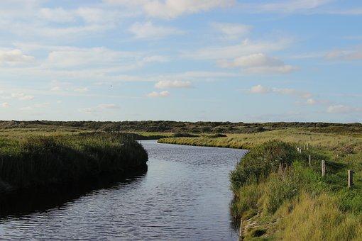 Landscape, Flat, River, Green, Fields, Graze
