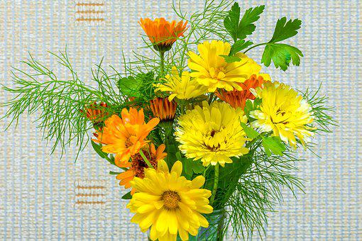 Flowers, Bouquet, Still Life, Nature, Flora, Colorful