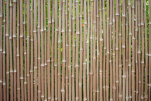 Tree, Fence, Texture, Wood, Background, Boards, Bamboo