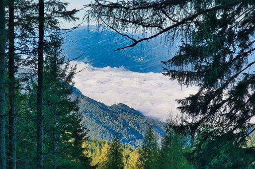 Wisp, Morning Mist, Landscape, Forest, Start Of Day