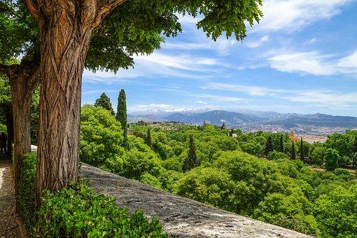 Spain, Granada, Alhambra, Andalusia, Palace, Islam